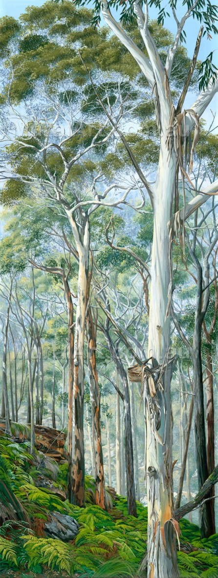 A painting of gum trees in the Australian Bush