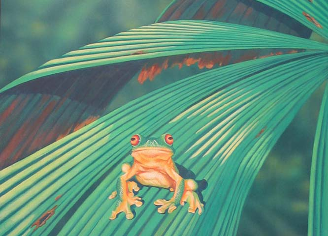 Image of a frog sitting on a pandanus palm leaf